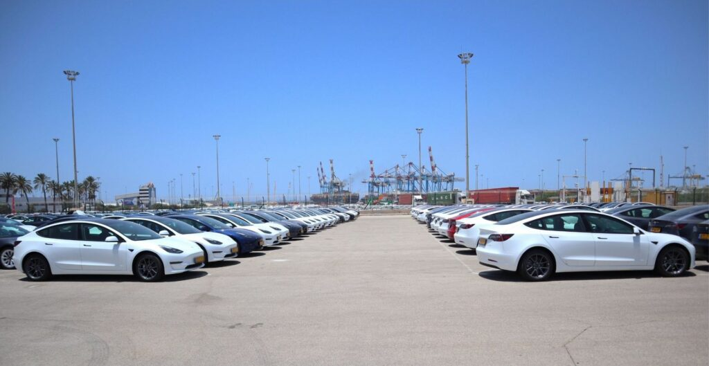 עשרות רכבי טסלה מודל 3 בנמל אשדוד לקראת מסירה